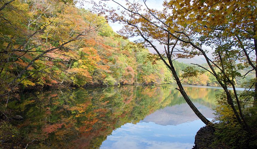 宮城縣南部的長老湖的紅葉