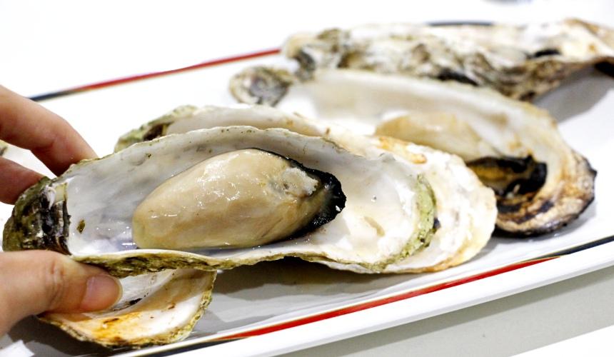 東北松島的牡蠣