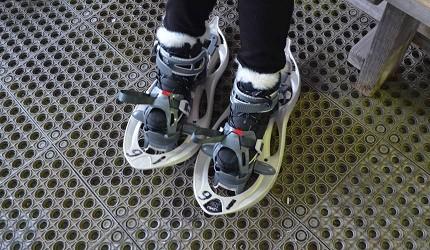 森吉山阿仁滑雪場可免費借用專用雪鞋