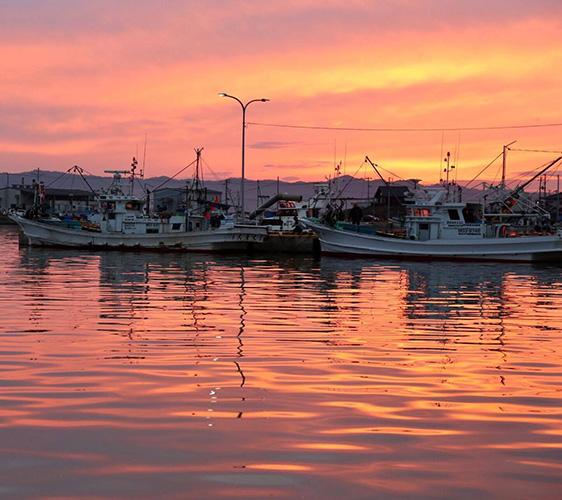 魚屋Hide的港邊夕陽