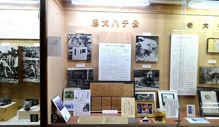 秋田犬博物館