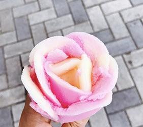 日本東北六縣秋田縣玫瑰冰淇淋
