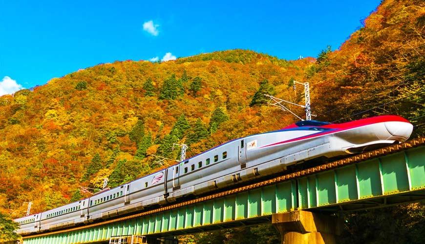 秋天就要玩秋田!楓葉季限定「田澤湖・角館觀光周遊PASS」巴士搭到飽只要1,000日圓