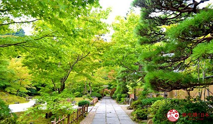 仙台自由行票券推薦「仙台MARUGOTO PASS」二日券可抵達觀光景點松島的「圓通院」(円通院)秋天的紅葉