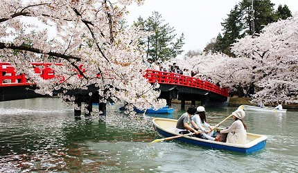 日本青森弘前西濠出租船(西濠贷しボート)赏樱