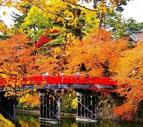 日本青森弘前的弘前城菊花红叶节(弘前城菊と红叶まつり)照片之二