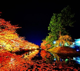 日本青森弘前的弘前城菊花红叶节(弘前城菊と红叶まつり)照片之一