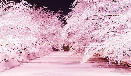 日本青森弘前的冬季点灯活动(冬のライトアップ)照片
