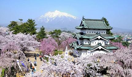 日本青森弘前的弘前城樱花美景