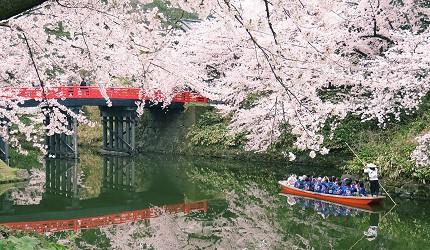 日本青森弘前中濠观光船(中濠観光舟)赏樱