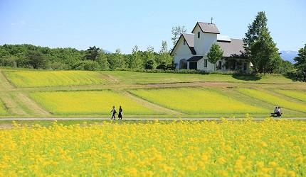 東北自駕用tep景點Yakurai garden