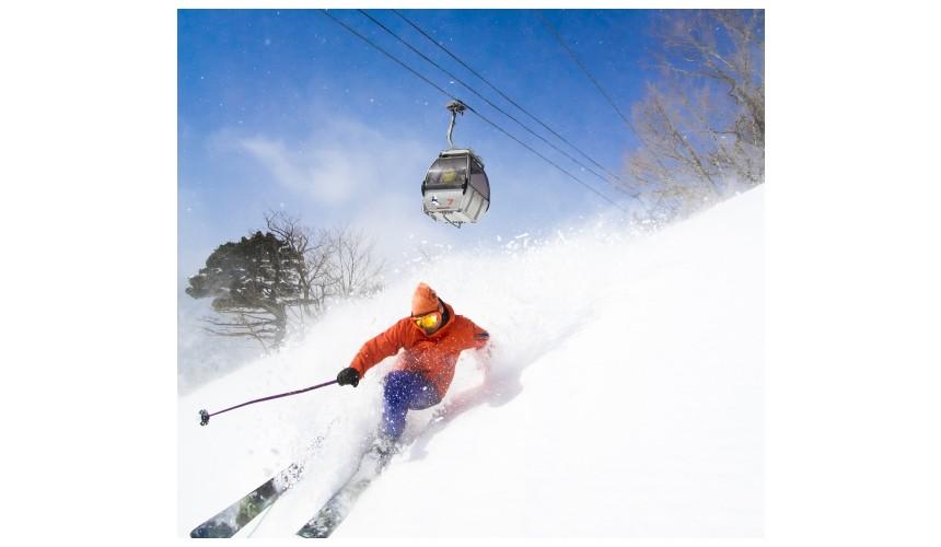狐狸村住宿推薦!宮城縣度假村飯店「Active Resorts 宮城藏王」的戶外活動滑雪