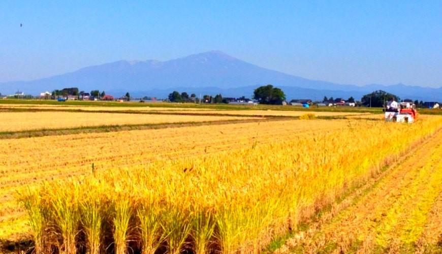 愛酒人士日本自由行的最佳地點山形的秋天