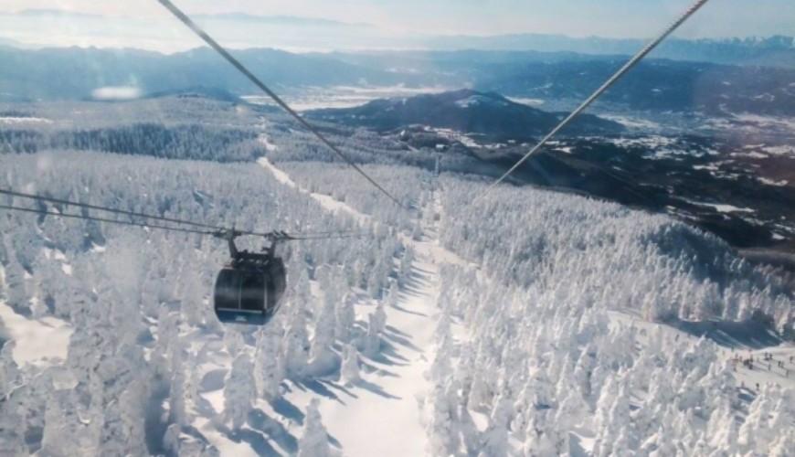 愛酒人士日本自由行的最佳地點山形的藏王樹冰